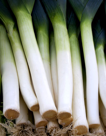 the history of Leeks